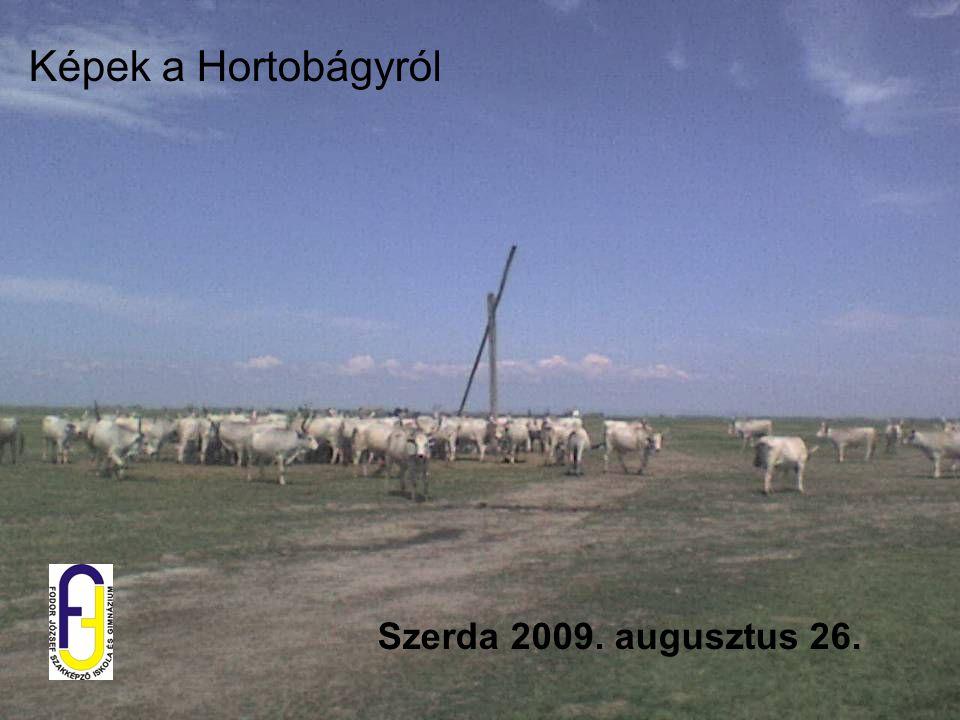 Képek a Hortobágyról Szerda 2009. augusztus 26.