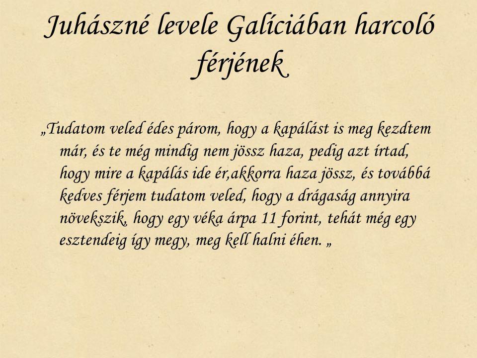 Juhászné levele Galíciában harcoló férjének