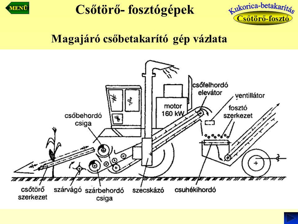 Kukorica-betakarítás