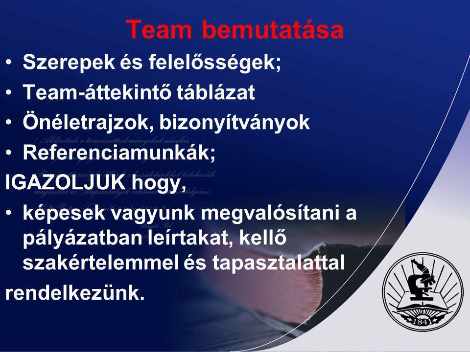 Team bemutatása Szerepek és felelősségek; Team-áttekintő táblázat