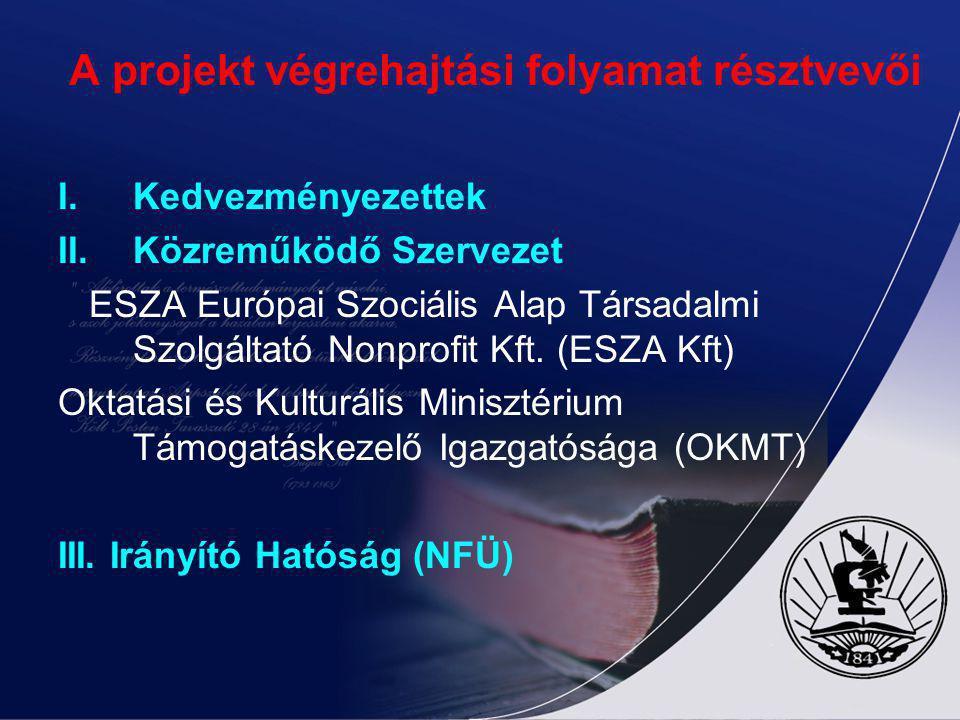 A projekt végrehajtási folyamat résztvevői