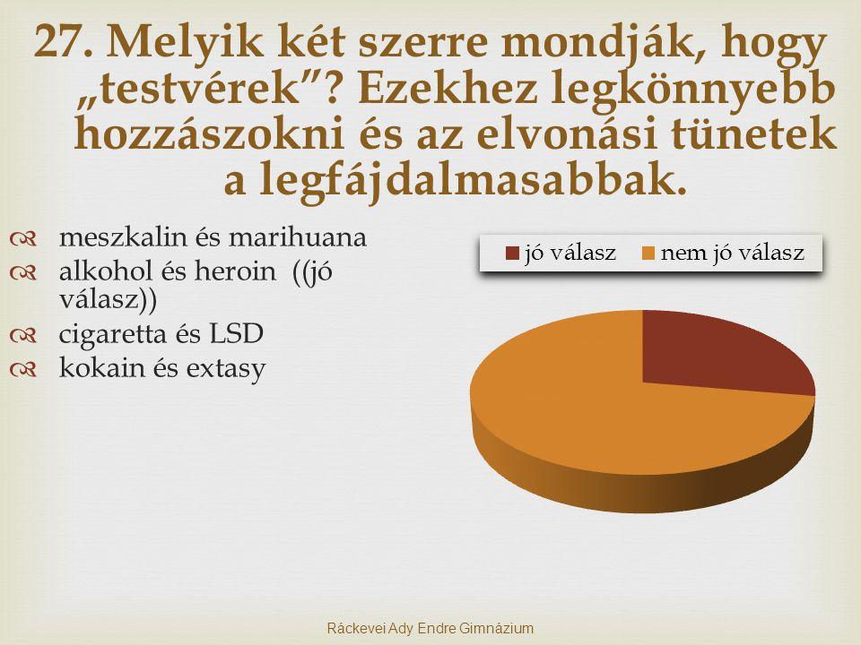 Ráckevei Ady Endre Gimnázium