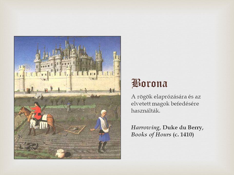 Borona A rögök elaprózására és az elvetett magok befedésére használták.