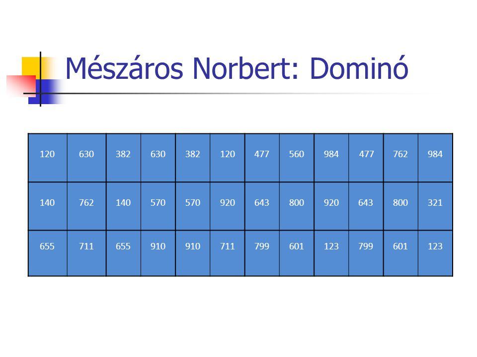 Mészáros Norbert: Dominó
