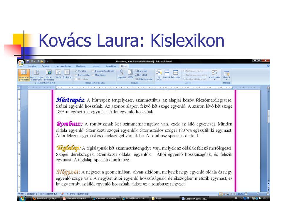 Kovács Laura: Kislexikon