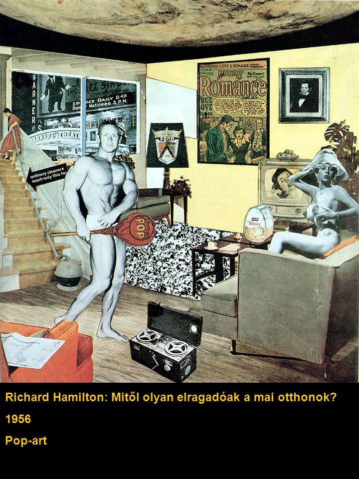 Richard Hamilton: Mitől olyan elragadóak a mai otthonok