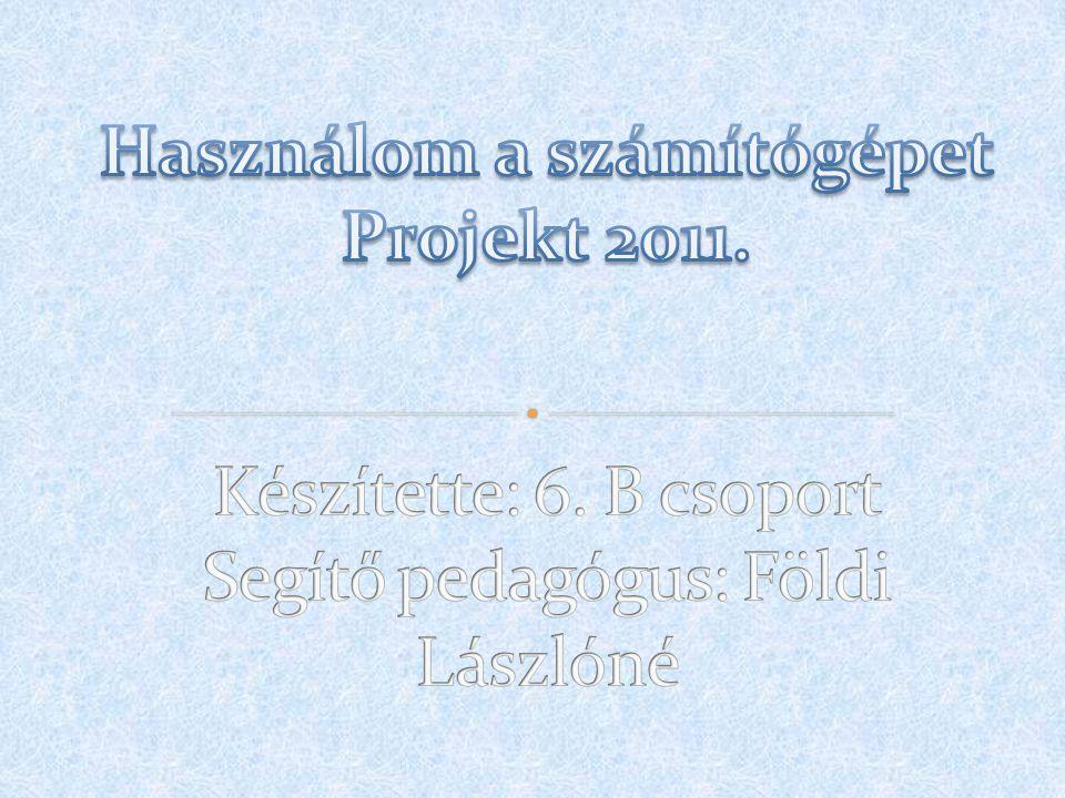 Használom a számítógépet Projekt 2011. Készítette: 6