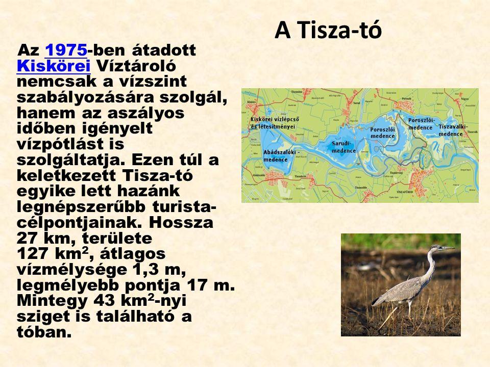 A Tisza-tó