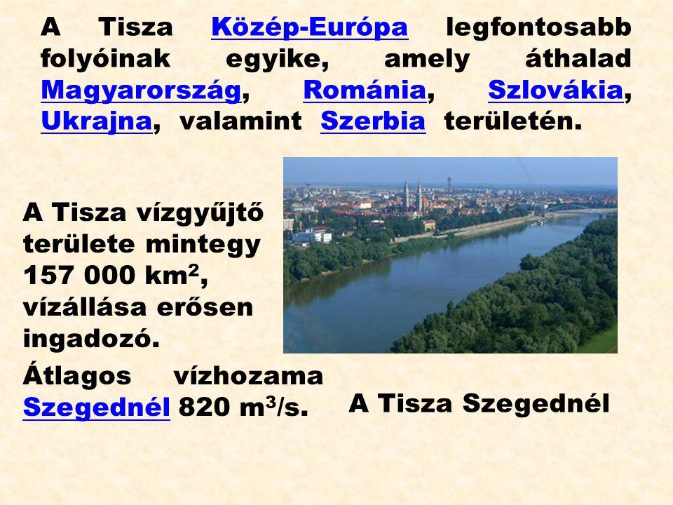 A Tisza Közép-Európa legfontosabb folyóinak egyike, amely áthalad Magyarország, Románia, Szlovákia, Ukrajna, valamint Szerbia területén.