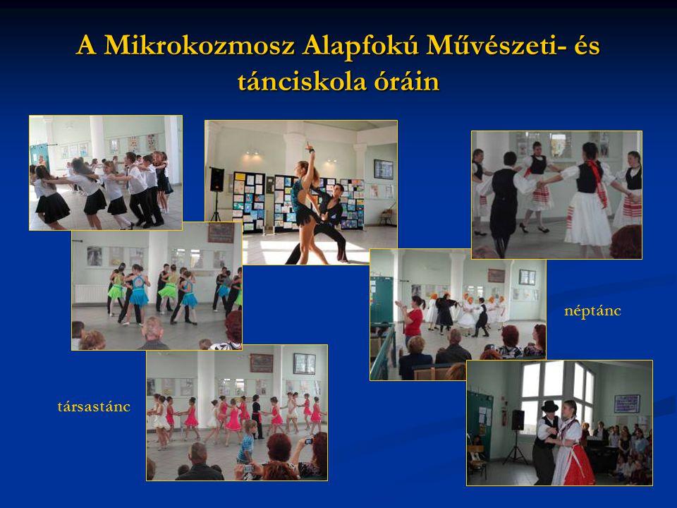 A Mikrokozmosz Alapfokú Művészeti- és tánciskola óráin