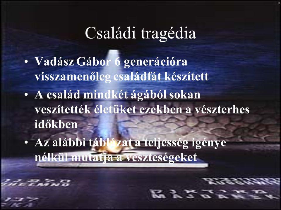 Családi tragédia Vadász Gábor 6 generációra visszamenőleg családfát készített.