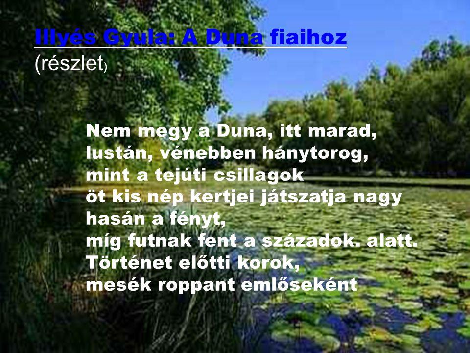 Illyés Gyula: A Duna fiaihoz (részlet)