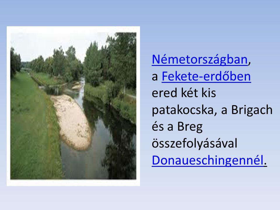 Németországban, a Fekete-erdőben ered két kis patakocska, a Brigach és a Breg összefolyásával Donaueschingennél.