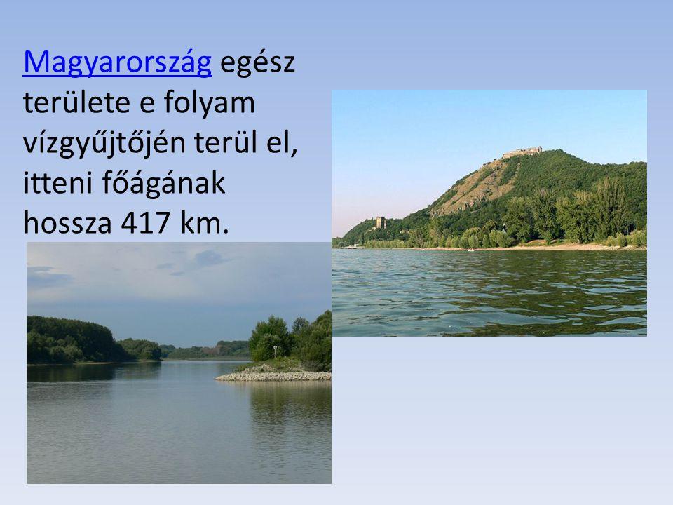 Magyarország egész területe e folyam vízgyűjtőjén terül el, itteni főágának hossza 417 km.