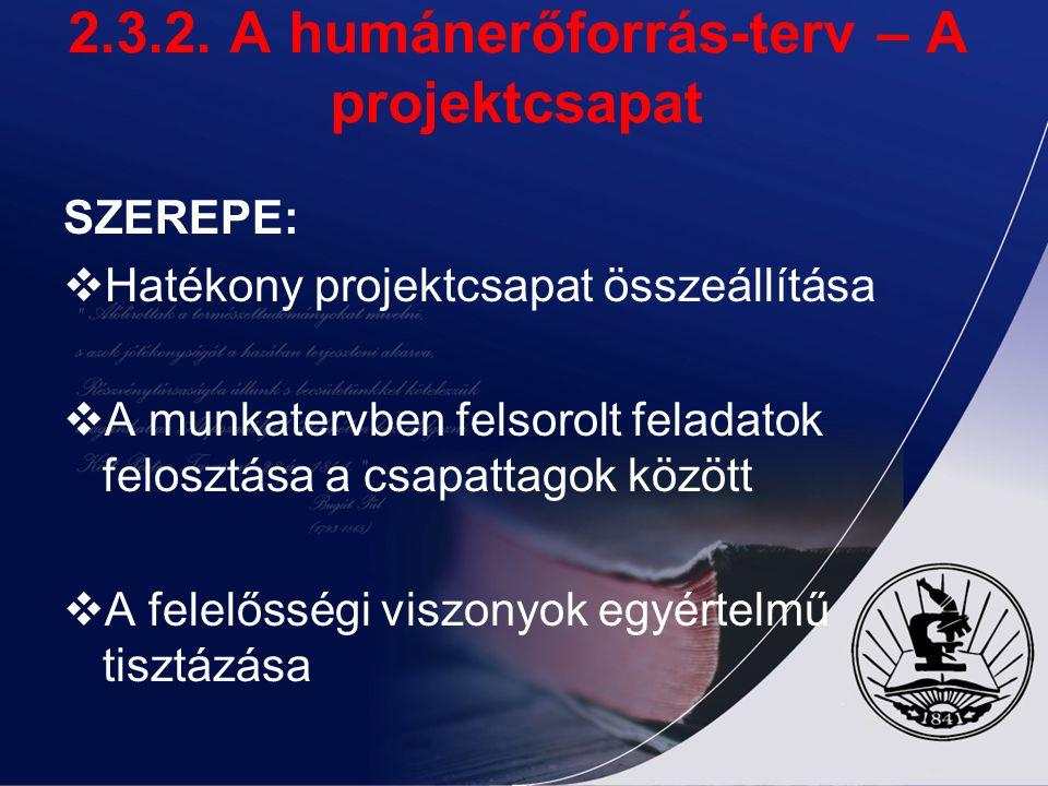 2.3.2. A humánerőforrás-terv – A projektcsapat