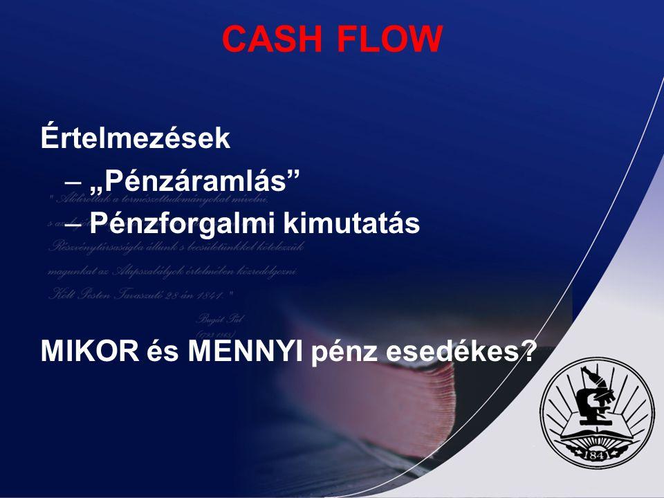 """CASH FLOW Értelmezések – """"Pénzáramlás – Pénzforgalmi kimutatás"""