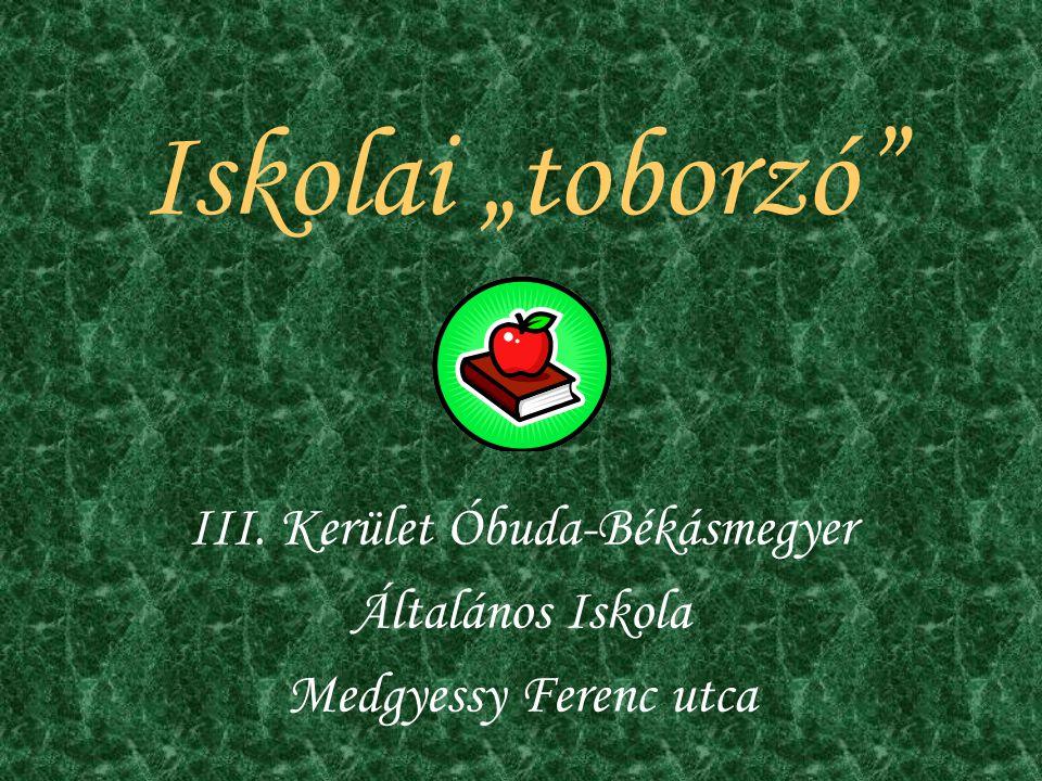 III. Kerület Óbuda-Békásmegyer Általános Iskola Medgyessy Ferenc utca