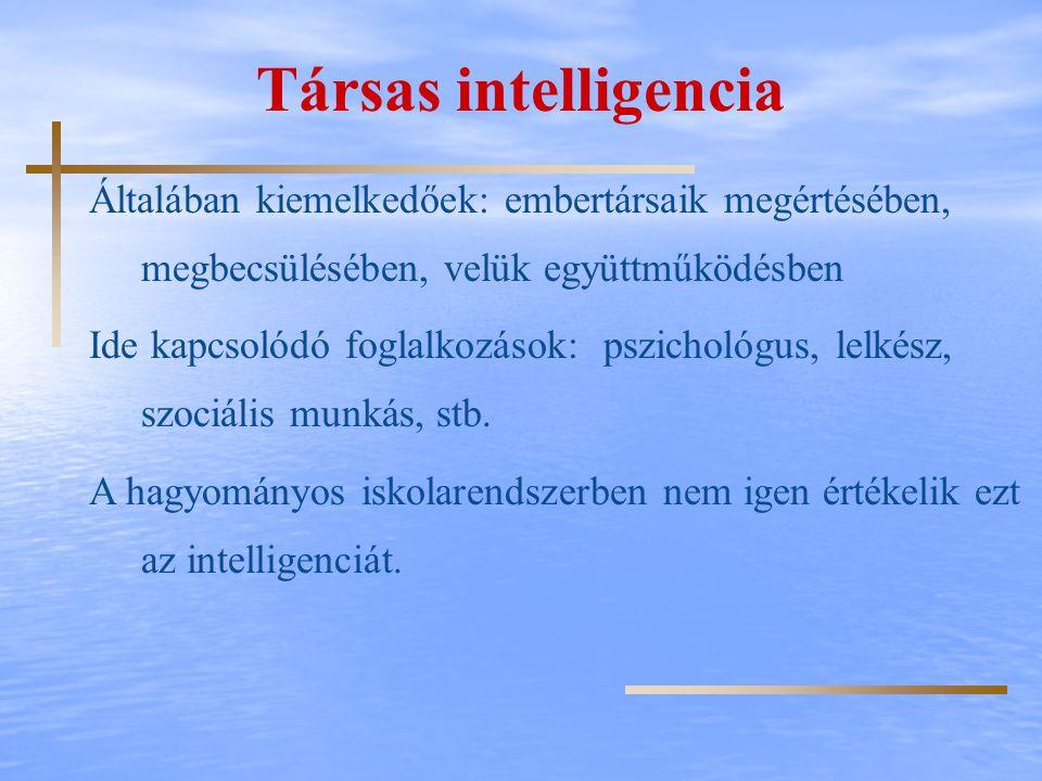 Társas intelligencia Általában kiemelkedőek: embertársaik megértésében, megbecsülésében, velük együttműködésben.