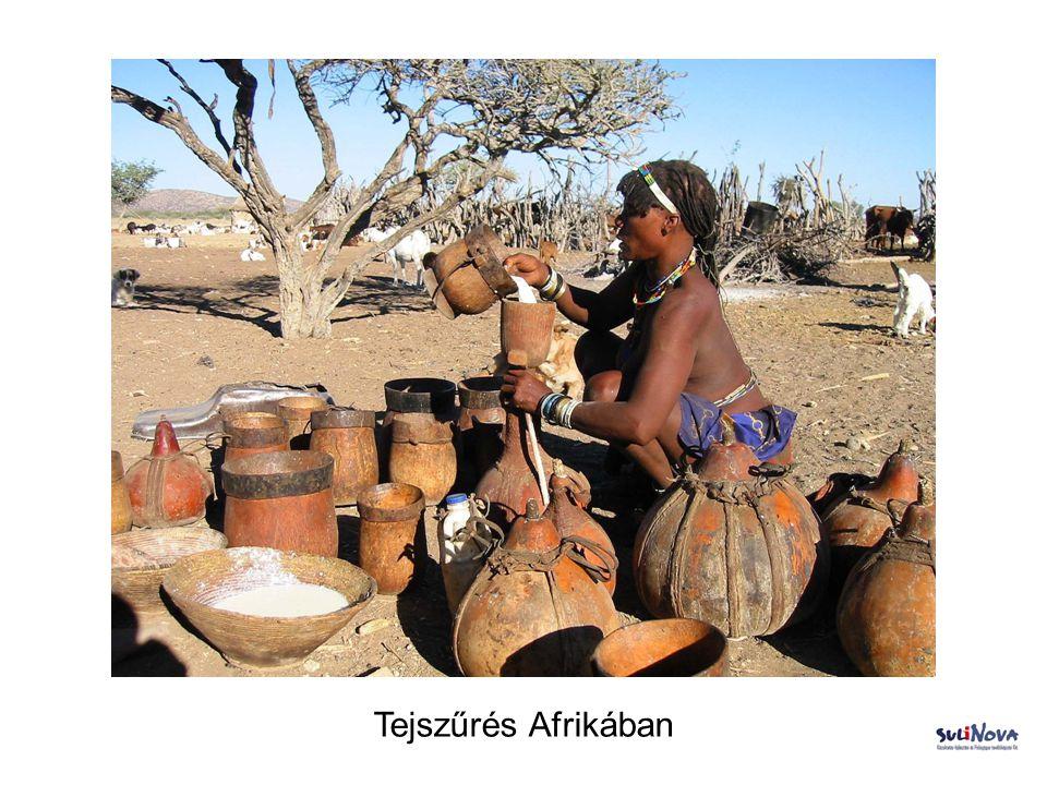 Tejszűrés Afrikában