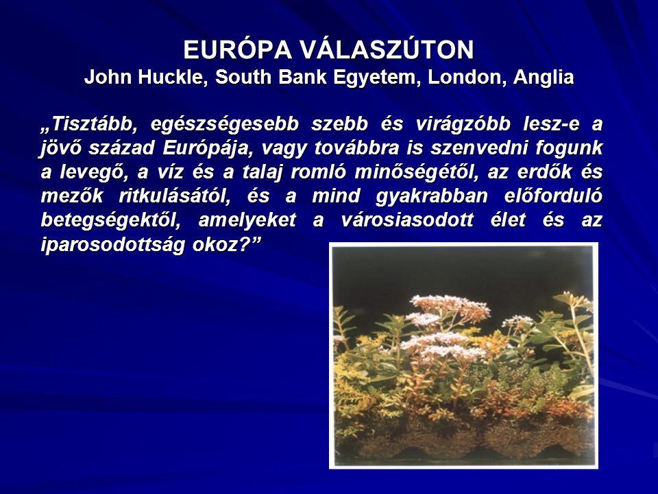 EURÓPA VÁLASZÚTON John Huckle, South Bank Egyetem, London, Anglia