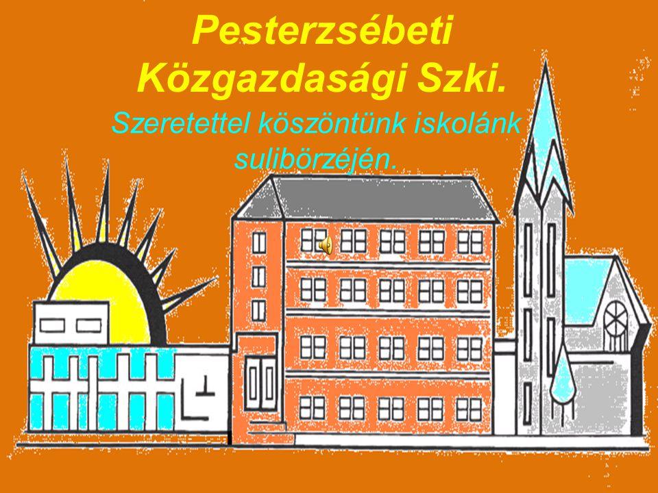 Pesterzsébeti Közgazdasági Szki.