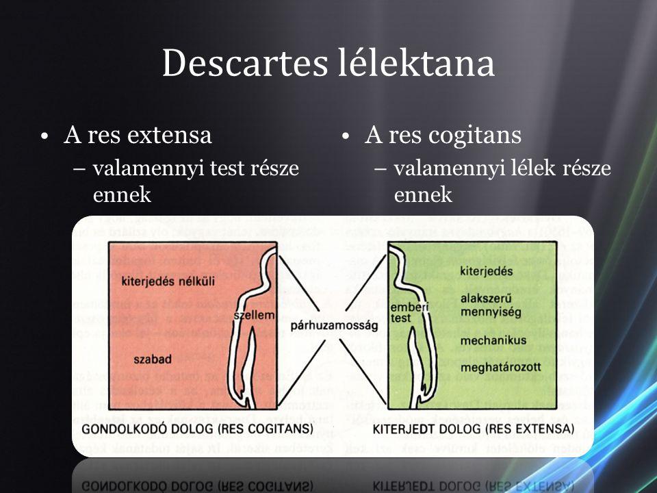 Descartes lélektana A res extensa A res cogitans