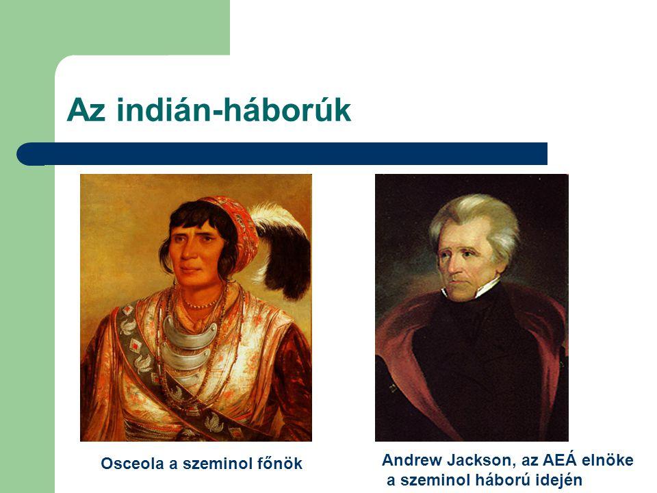 Az indián-háborúk Andrew Jackson, az AEÁ elnöke