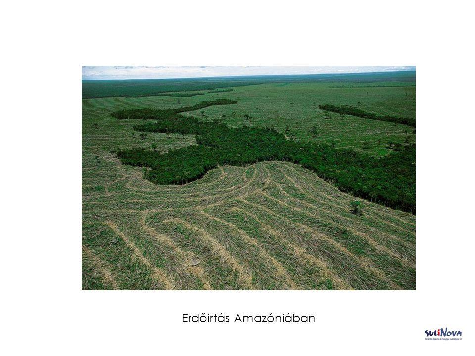 Erdőirtás Amazóniában