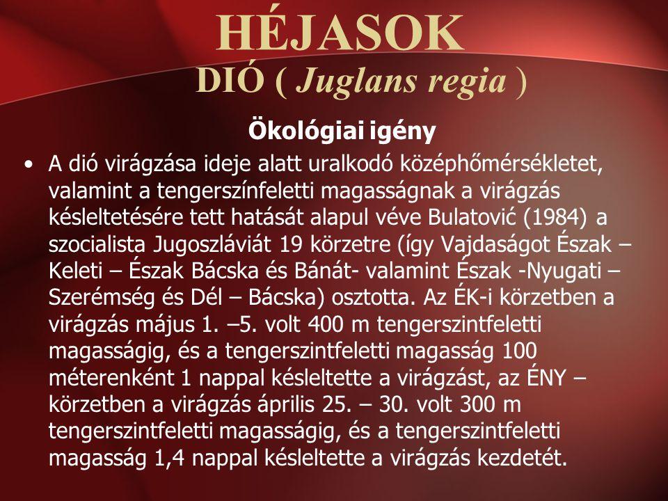 HÉJASOK DIÓ ( Juglans regia ) Ökológiai igény
