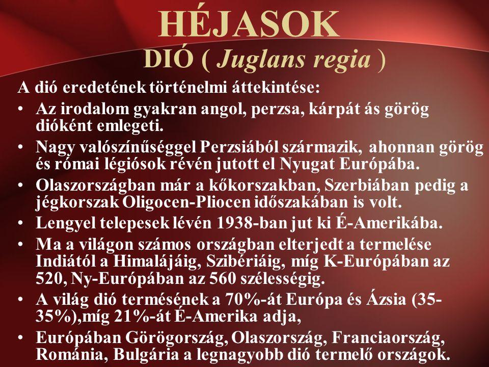 HÉJASOK DIÓ ( Juglans regia ) A dió eredetének történelmi áttekintése: