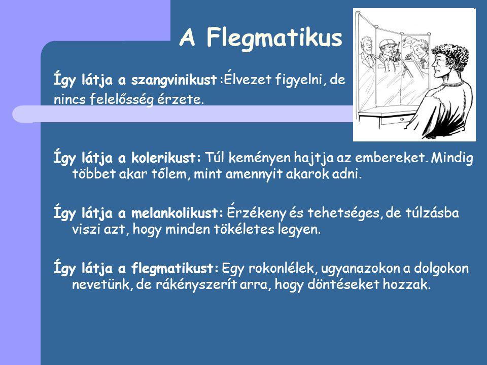 A Flegmatikus Így látja a szangvinikust :Élvezet figyelni, de