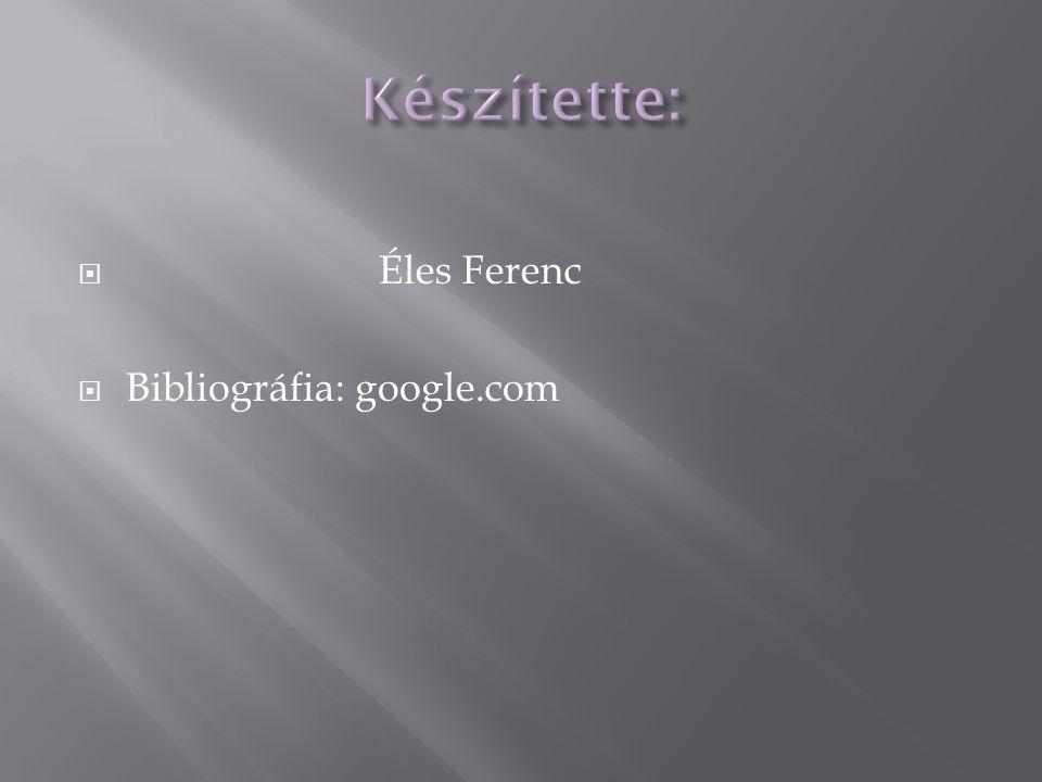 Készítette: Éles Ferenc Bibliográfia: google.com