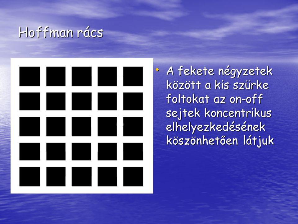 Hoffman rács A fekete négyzetek között a kis szürke foltokat az on-off sejtek koncentrikus elhelyezkedésének köszönhetően látjuk.