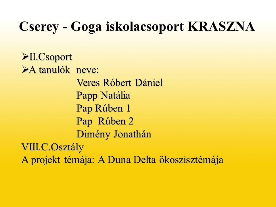 Cserey - Goga iskolacsoport KRASZNA