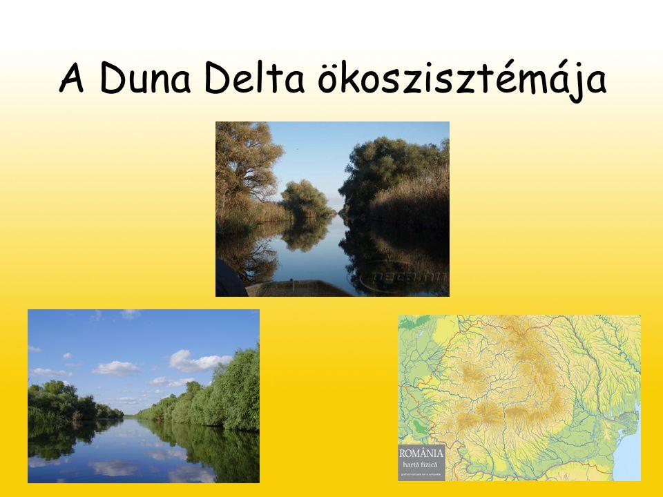 A Duna Delta ökoszisztémája