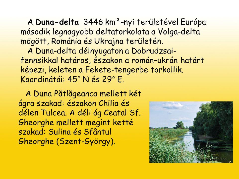 A Duna-delta 3446 km²-nyi területével Európa második legnagyobb deltatorkolata a Volga-delta mögött, Románia és Ukrajna területén.