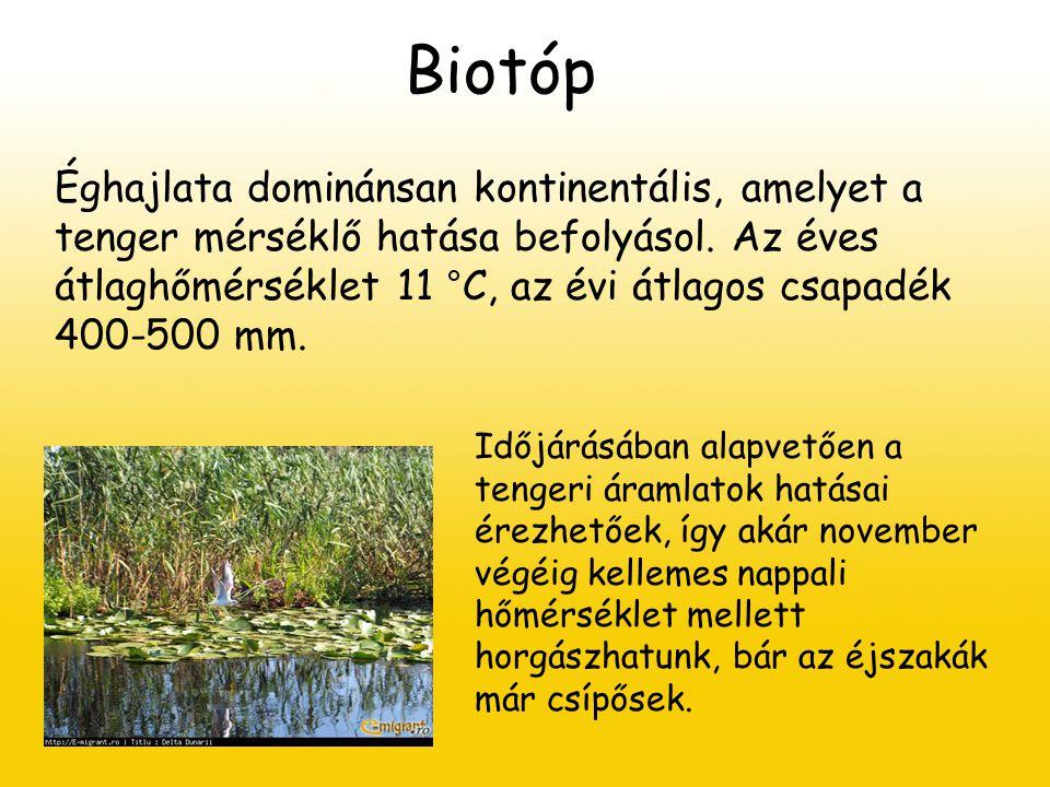 Biotóp