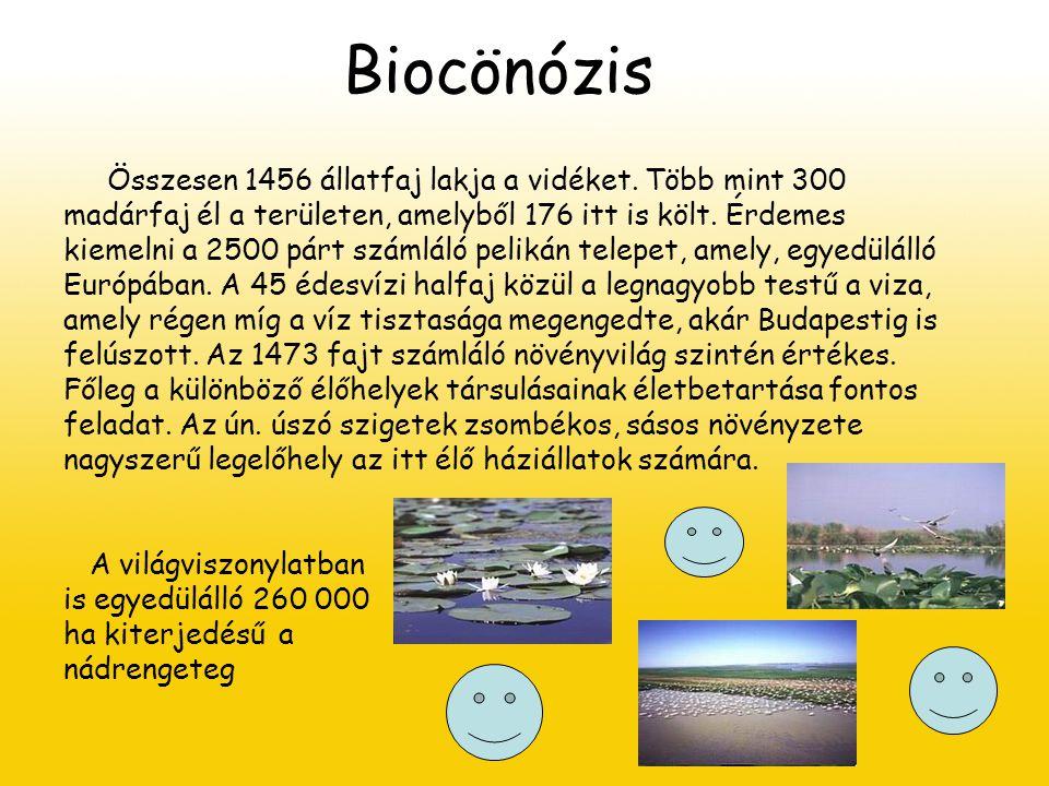 Biocönózis