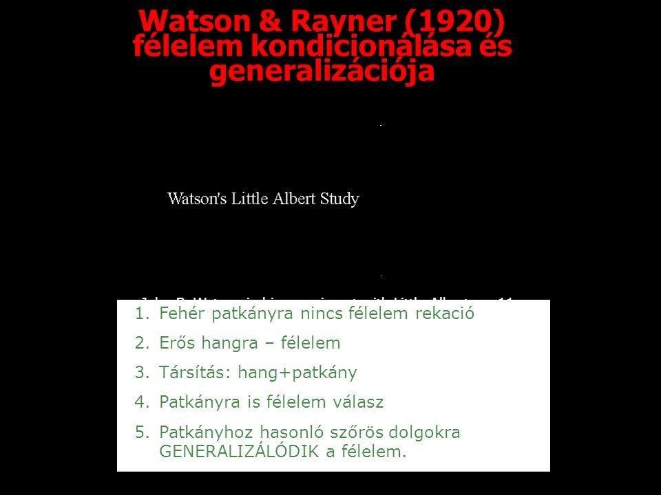 Watson & Rayner (1920) félelem kondicionálása és generalizációja