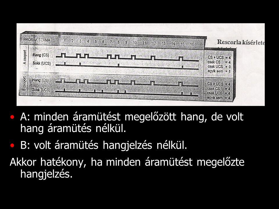 A: minden áramütést megelőzött hang, de volt hang áramütés nélkül.