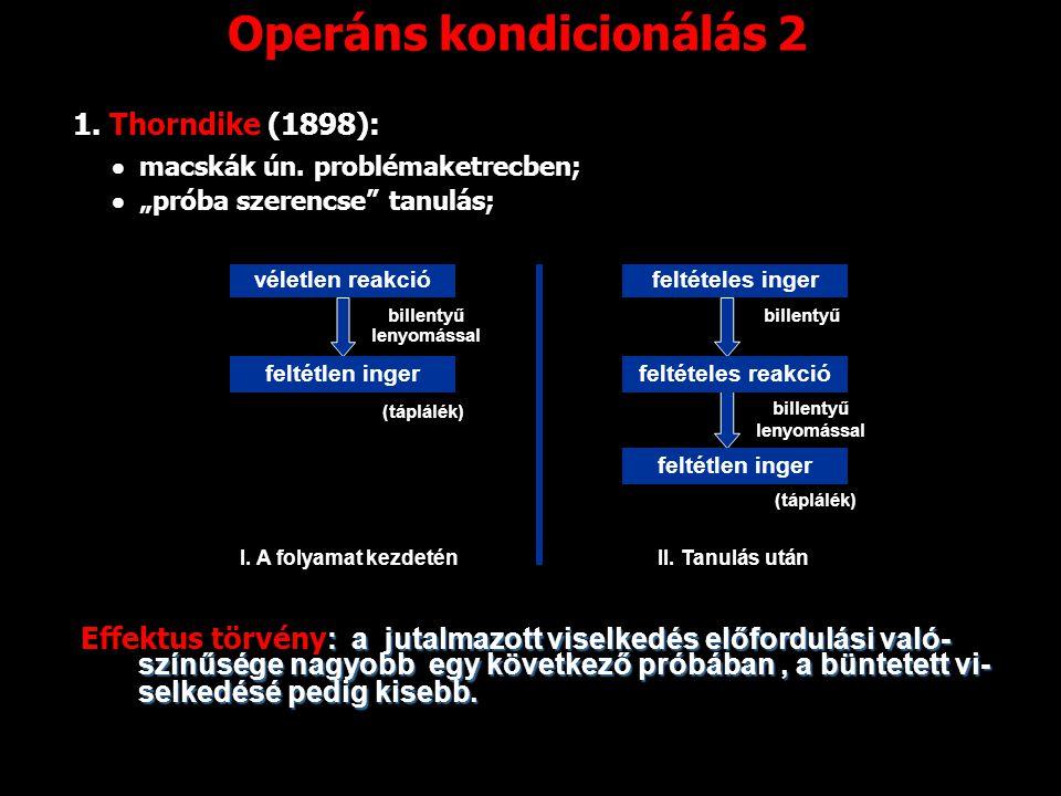 Operáns kondicionálás 2