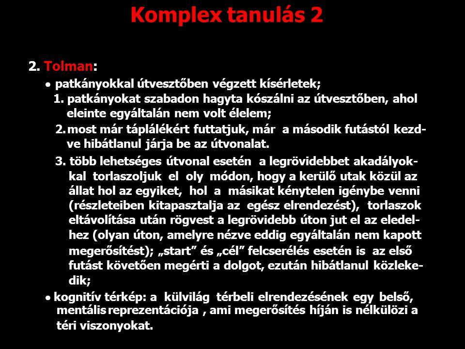Komplex tanulás 2 2. Tolman: