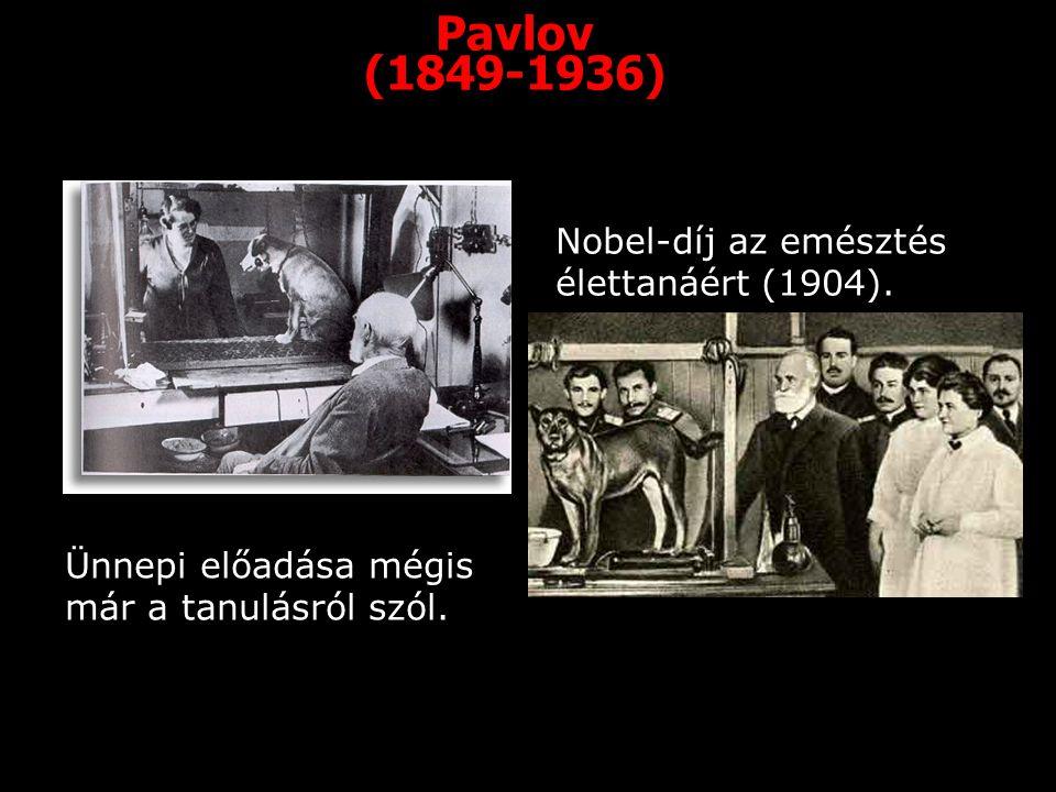 Pavlov (1849-1936) Nobel-díj az emésztés élettanáért (1904).