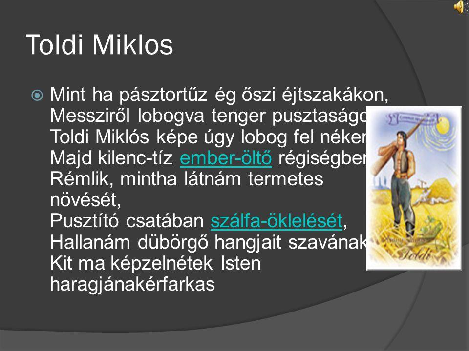 Toldi Miklos