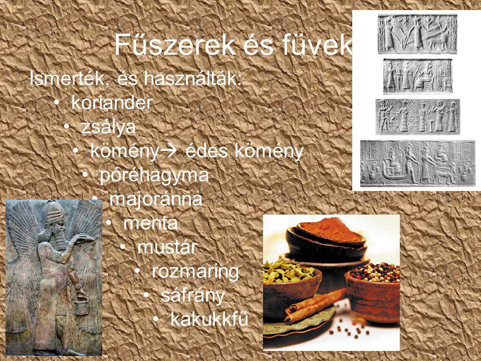 Fűszerek és füvek Ismerték, és használták: koriander zsálya