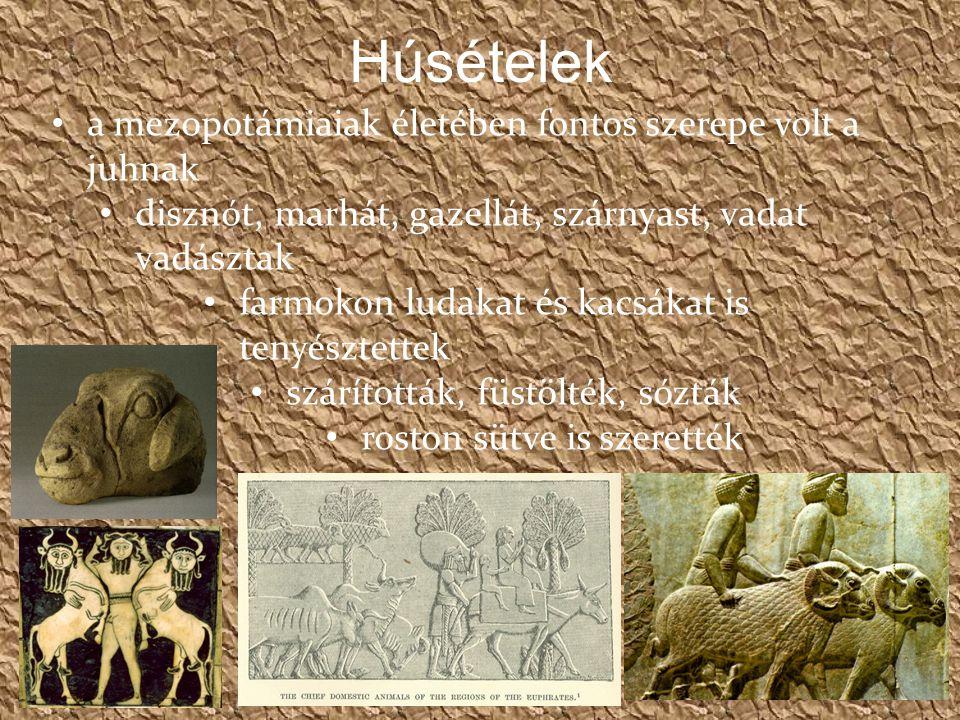 Húsételek a mezopotámiaiak életében fontos szerepe volt a juhnak