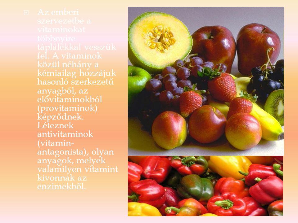 Az emberi szervezetbe a vitaminokat többnyire táplálékkal vesszük fel