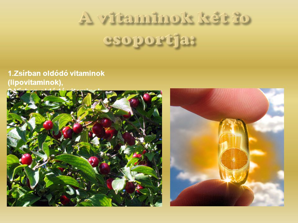 A vitaminok két fo csoportja: