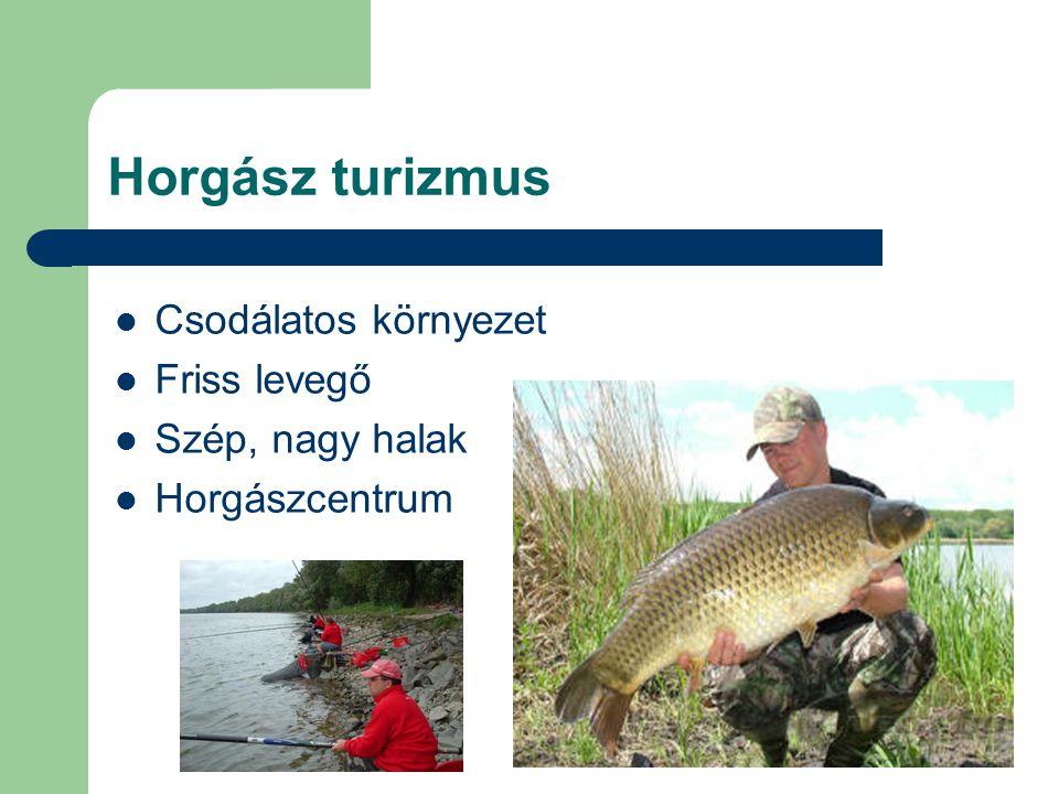 Horgász turizmus Csodálatos környezet Friss levegő Szép, nagy halak