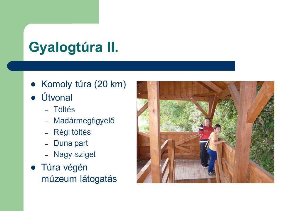 Gyalogtúra II. Komoly túra (20 km) Útvonal Túra végén múzeum látogatás